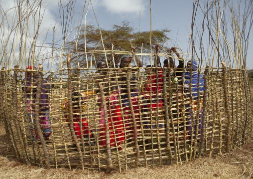Borana women building a house with wood, Marsabit district, Marsabit, Kenya