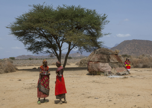 Rendille tribeswomen, Marsabit district, Ngurunit, Kenya