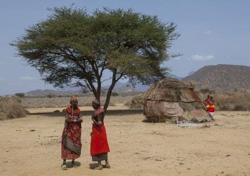 Rendille tribeswomen, Marsabit district, Ngurunit, Kenya