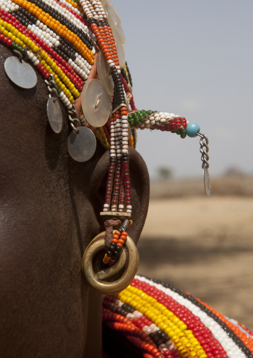 Detail of a rendille tribeswoman earring, Marsabit district, Ngurunit, Kenya