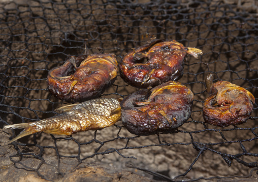 Smoke-drying fish, Baringo county, Baringo, Kenya