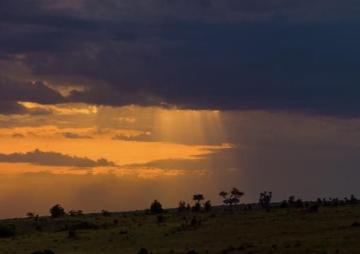 Storm clouds gathering over the savannah, Narok, Siana, Kenya