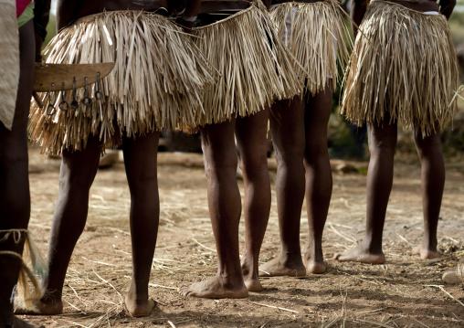 Tharaka tribe women skirts, Nairobi County, Mount Kenya, Kenya