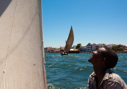 Man looking at the sail of his dhow while racing, Lamu County, Lamu, Kenya