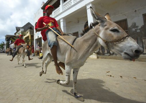 Young boy riding mule during donkey race, Maulidi festival, Lamu, Kenya