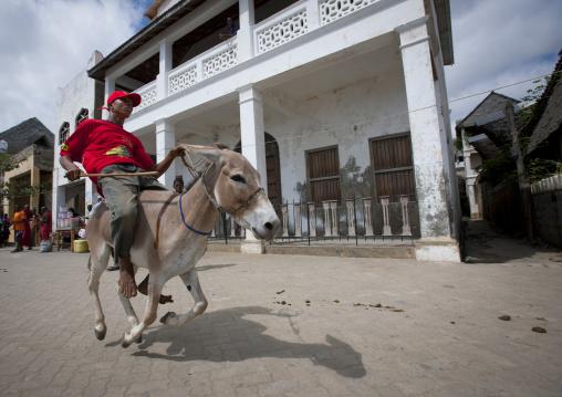 Men riding mules during maulidi donkey race, Lamu, Kenya