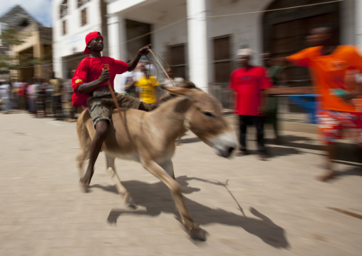 Donkey race during the Maulid festival, Lamu County, Lamu, Kenya