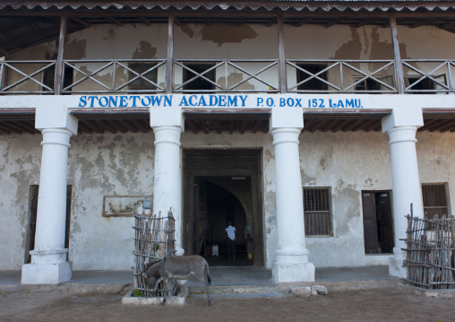 Entrance door of the stonetown academy, Lamu, Kenya