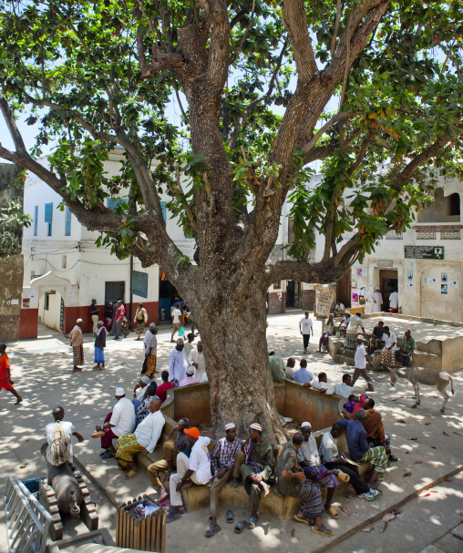People resting in mkunguni sqaure in lamu town - kenya