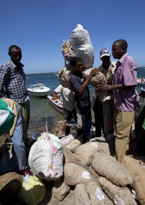 Men carrying sacksof qat as a fresh stock arrived to the port of lamu, Kenya
