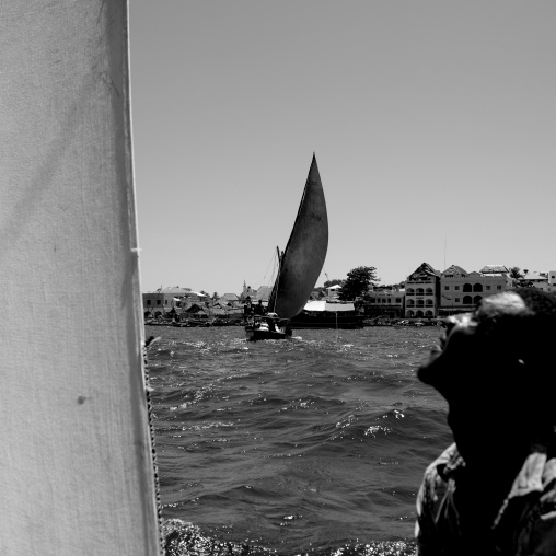 Man looking at the sail of his dhow while racing, Lamu in background, Lamu, Kenya