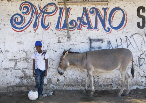Young boy with a ball in front of a wall with a donkey, Lamu County, Lamu, Kenya
