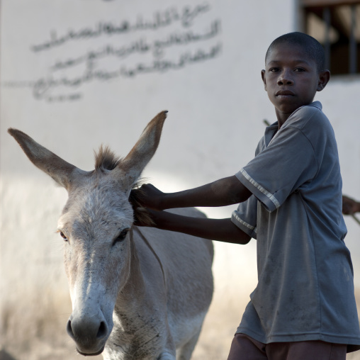 Young boy with donkey, Lamu, Kenya