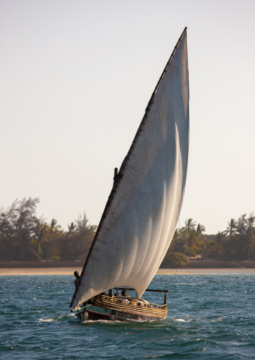 Dhow sailing along the coast, Lamu County, Lamu, Kenya