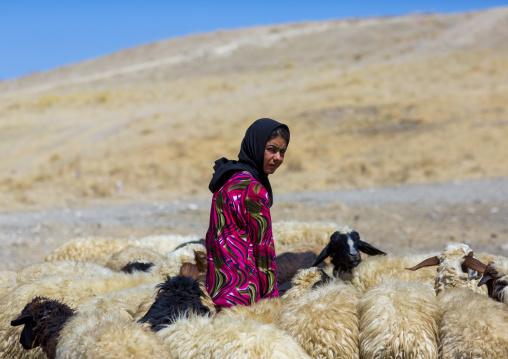 Kurdish Sheperd, Azaban, Kurdistan, Iraq