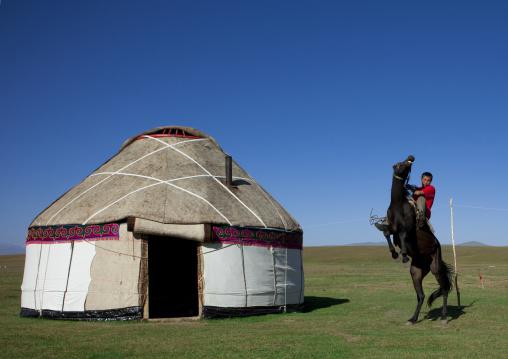 Horseman Rearing Up A Horse In Front Of A Yurt, Jaman Echki Jailoo Village, Song Kol Lake Area, Kyrgyzstan