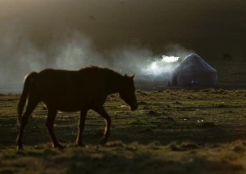 Horse In Front Of A Smoking Yurt In Jaman Echki Jailoo Village, Song Kol Lake Area, Kyrgyzstan
