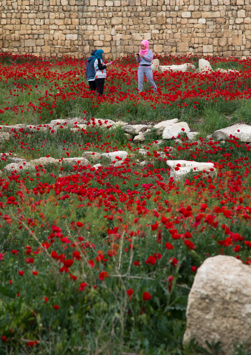 Women taking pictures in a field full of poppies and ruins, Beqaa Governorate, Baalbek, Lebanon