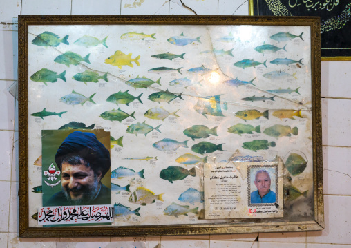 Fish species chart with a Hezbollah leader, South Governorate, Tyre, Lebanon
