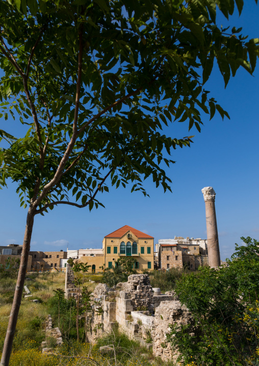 Old house with columns ruins, South Governorate, Tyre, Lebanon