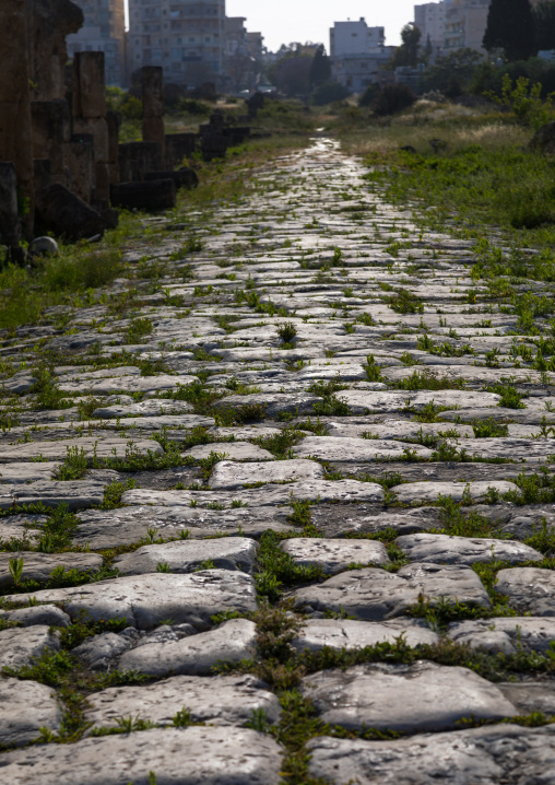 Old roman road in al Bass site, South Governorate, Tyre, Lebanon