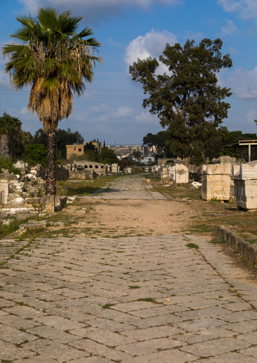 Roman triumphal arch and colonnaded street in al Bass site, South Governorate, Tyre, Lebanon