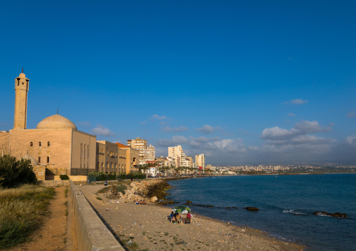 Mosque and cityscape, South Governorate, Tyre, Lebanon