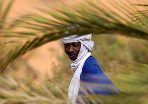 Portrait of a tuareg man in an oasis, Fezzan, Umm al-Maa, Libya