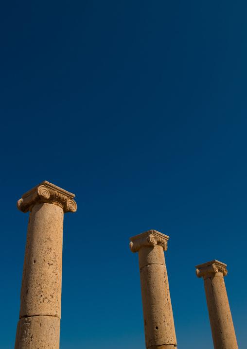 Roman column in the old forum in leptis magna, Tripolitania, Khoms, Libya