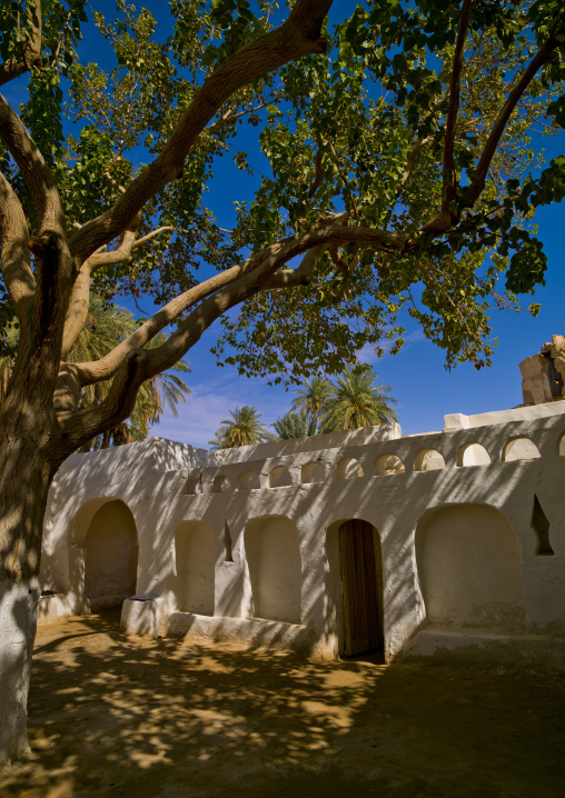 The old town in the oasis, Tripolitania, Ghadames, Libya