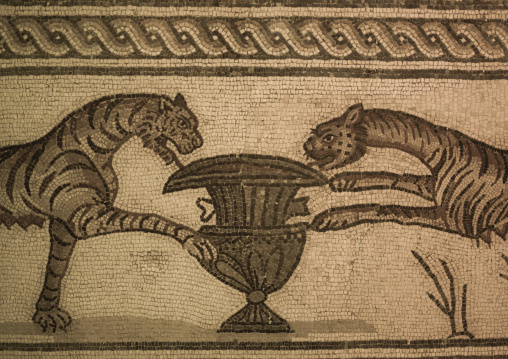 Roman mosaic, Cyrenaica, Tocra, Libya