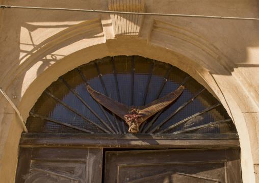 Dried shark tail on a house door, Tripolitania, Tripoli, Libya