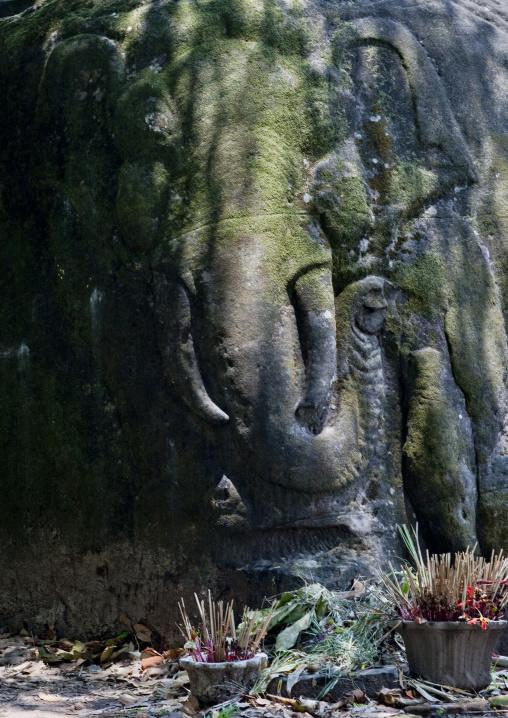 Elephant carving at wat phu khmer temple, Champasak, Laos