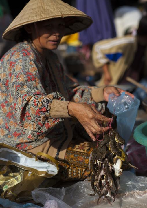 Woman selling frogs in a market, Pakse, Laos