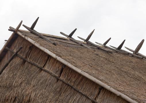 Hmong minority house roof, Luang prabang, Laos