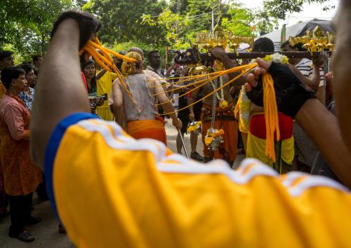 A Devotee Has His Back Pierced With Hooks During The Thaipusam Hindu Festival At Batu Caves, Southeast Asia, Kuala Lumpur, Malaysia