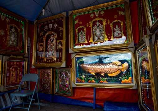 Giant Fish Framed Sold In The Thaipusam Religious Festival In Batu Caves, Southeast Asia, Kuala Lumpur, Malaysia