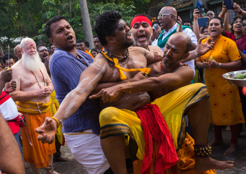 Devotee In Trance At Thaipusam Hindu Festival At Batu Caves Before Being Pierced, Southeast Asia, Kuala Lumpur, Malaysia