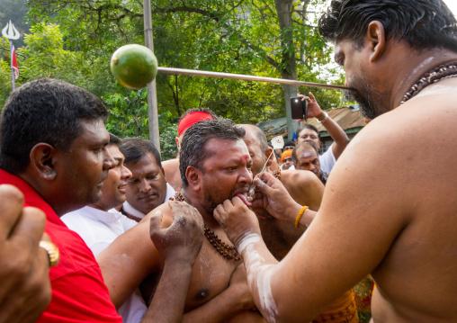 A Devotee Cheek Is Pierced By A Priest At Thaipusam Hindu Festival At Batu Cave, Southeast Asia, Kuala Lumpur, Malaysia