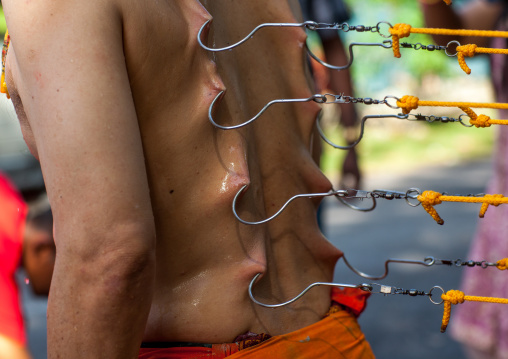 A Devotee Has His Back Pierced With Hooks During The Thaipusam Hindu Festival At Batu Caves, Southeast Asia, Kuala Lumpur, Malaysia