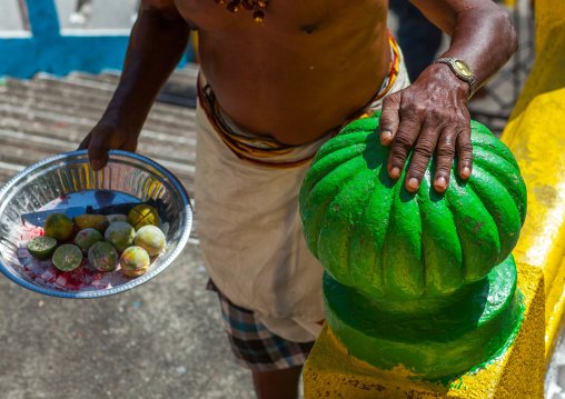 Hindu Devotee With Offerings In Annual Thaipusam Religious Festival In Batu Caves, Southeast Asia, Kuala Lumpur, Malaysia