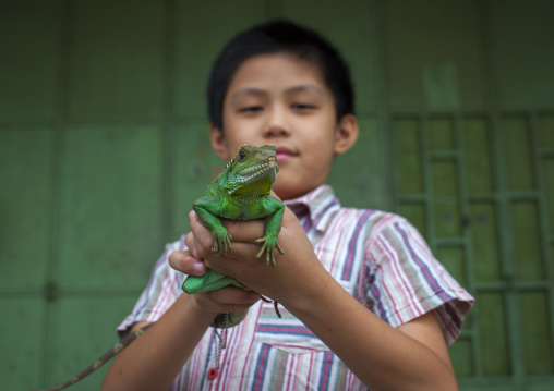 Child Holding A Green Male Water Dragon, George Town, Penang, Malaysia