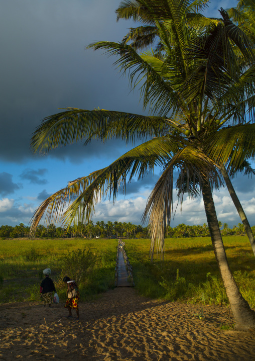Landscape In The Country, Inhambane, Mozambique