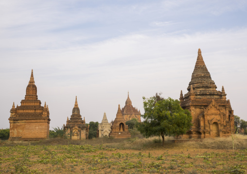 Bagan plain dotted with thousands of temple ruins, Bagan, Myanmar