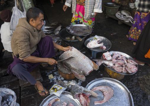 Fish market, Sittwe, Myanmar