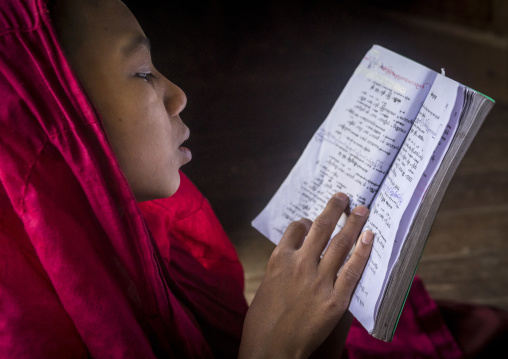 Young novice reading a book, Mrauk u, Myanmar