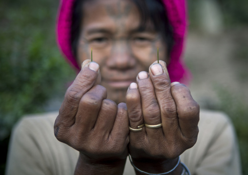 Muun Tribe Woman Showing Spines They Used To Make Tattoos, Mindat, Myanmar