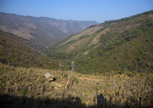 Path in the hills, Mindat, Myanmar