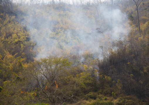 Forest fire, Mindat, Myanmar
