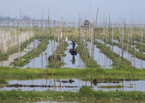 Floating Gardens, Inle Lake, Myanmar